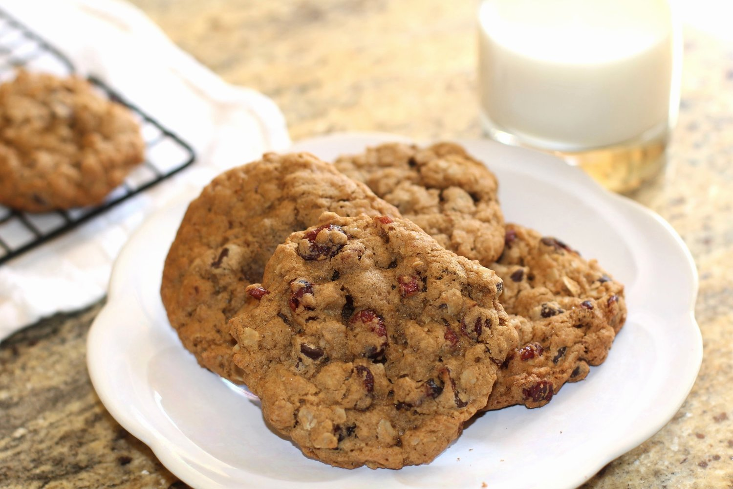 Oatmeal-Cranberry- Chocolate Chip Cookie